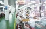 长沙国家生物产业基地经济逆势上扬 月均收入破亿元