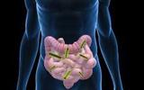 中科院新研究: 抗生素滥用增强肠道细菌耐药性