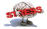 研究发现压力引发焦躁与白细胞有关