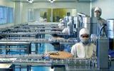 绥化大力发展生物产业 获利百亿元
