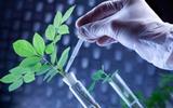生物产业渐成工业发展新引擎