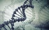 美创业公司MyoKardia将基因组学应用到心脏病诊断