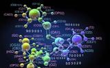 美科学家用基因技术有效治疗白血病