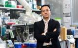 专访   华人科学家程柯教授:2018年,希望干细胞治疗多出新突破