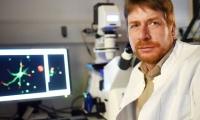 "Neuron重磅:修复神经纤维的关键蛋白已被""捕获"""
