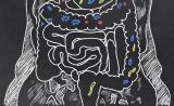 科学家揭秘:肠道微生物是如何与大脑交流的