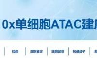 必看!10x Genomics单细胞ATAC-seq实测数据概览