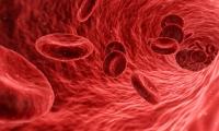 """Nature子刊突破性成果!能抗癌、抗感染,还能让""""造人""""更顺利,血液中的这种蛋白厉害了!"""