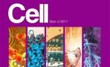 Cell重磅发布:2017年度十大最佳论文出炉!(免疫疗法、肠道菌群、人工智能……)