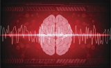 "Science:创建大脑""零件""列表——DNA甲基化解析神经元多样性"