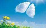 """专家在国际肺癌关注月指出:远离肺癌要关注""""三霾五气"""" 提高早筛查意识"""