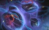 中美学者合作发表Cell:改造CRISPR系统用其捕捉基因组调控区