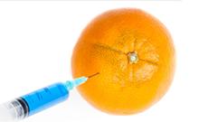 转基因作物的安全性之争
