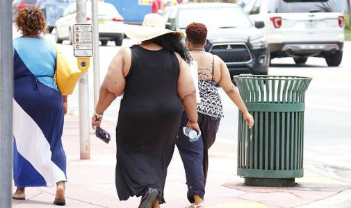 Science子刊:肥胖,會直接損傷血管!