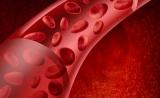 """美国科罗拉多大学称:新型抗氧化剂让血管""""年轻""""至少15岁"""