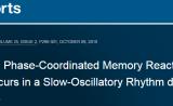 睡着也能记忆?Cell子刊:无论清醒或睡眠,大脑记忆机制相似