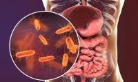 Nature | 预防治疗血管疾病的他汀类药物的另一功效:可减少肥胖人群的肠道菌群失调!