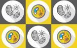 """MIT开发新型""""抗菌肽"""",不仅解决抗生素耐药性,还能抑制败血症"""