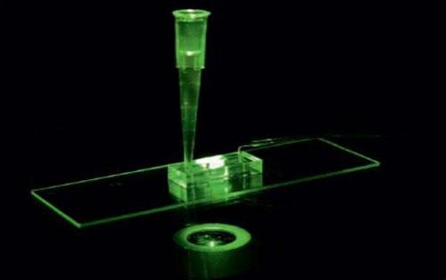 盘点2014年中国十大生物芯片企业