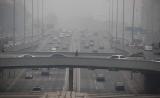 FASEB J:空气污染破坏DNA,或致心脏衰竭