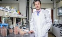 Nature子刊:一种口服细菌补充剂,解锁代谢综合征