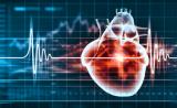 首次!安进Cell子刊解析心血管药物新靶标三维结构