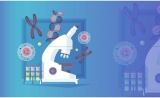 癌症免疫疗法CAR-T有望降低毒性提升有效率