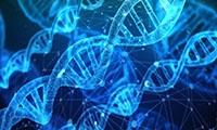 Science重磅:迄今为止最小的基因编辑工具,体积仅为CRISPR-Cas9的一半!