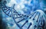 基因检测市场发展综述