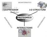 蛋白质组学分析图