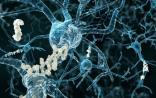 一喜一忧,阿尔兹海默症在研药物新动态 | Science、Nature子刊