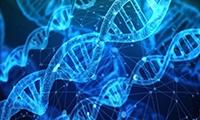 环码生物完成千万美元天使轮融资,打造世界级环状RNA技术平台