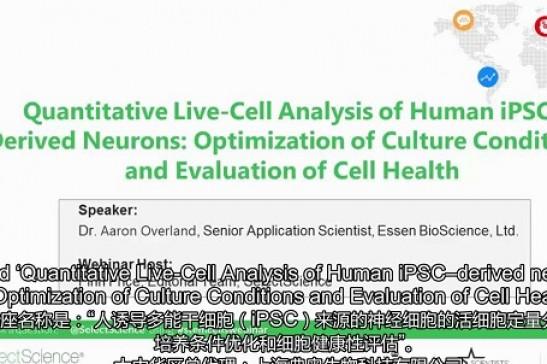 如何动态观测并定量iPSC来源的神经细胞?