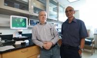 速览 | 斩草除根,新的根除癌症干细胞小分子抗癌药被发现