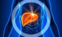 何首乌伤肝?易感基因告诉你答案