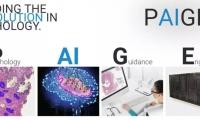 "FDA踩雷?全球首个AI癌症诊断""突破设备"",暴露AI创企与顶级癌症中心合作争议"