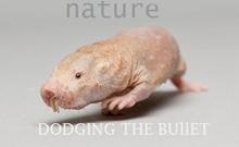 7月18日Nature杂志生物学精选