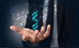 Cancer cell首次揭示lncRNA在20种癌症中的DNA甲基化改变图谱