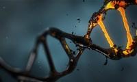 """""""垃圾DNA""""突變可能引起自閉癥"""