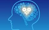 多种精神疾病竟与小脑结构变化有关!?