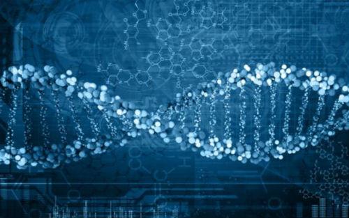 "ENJM:前列腺癌""里程碑""药物,靶向DNA修复缺陷"