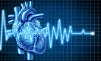 心肌细胞不可逆损伤不能再生?Nature:帮助心脏自愈
