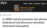 华人学者Science最新成果:抑制LIMA1可治疗高胆固醇血症