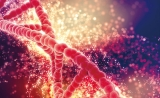 GBI专题报告 | 中国药企加入全球新药角逐  PARP抑制剂前途无量