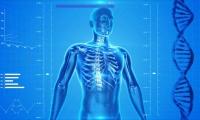 一文读懂 | 测序技术揭秘肠道菌群与肝癌免疫治疗的关系