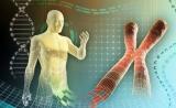 FDA颁新规,精准医学时代靶向研究新方向