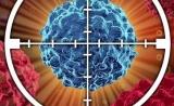 防止癌症复发不是梦,科学家已找到耐药癌细胞共同弱点