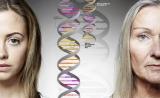 """中国学者Nature突破成果:首次揭秘""""个体之间衰老速度不同""""的遗传基础!"""