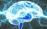 """我国脑神经调控技术步入""""领跑者""""行列"""