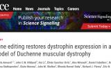 Science重磅! CRISPR治疗大型哺乳动物肌萎缩,首次取得突破进展